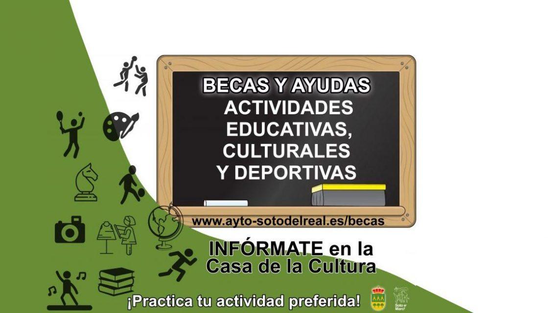 Acceso de los menores de Soto del Real a la Cultura, Educación y Deporte